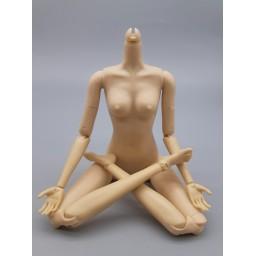 тело MengF